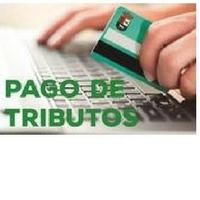 BOLAÑOS CUENTA CON UN NUEVO SISTEMA TELEMÁTICO DE PAGO DE RECIBOS